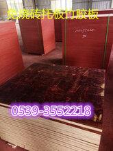 空心磚竹膠板價格圖片