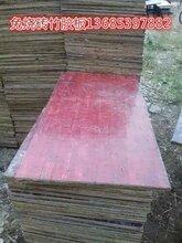 免燒磚竹膠板價格圖片