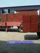 砖机竹胶板托板销售生产图片