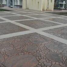 供应:威海压模水泥地坪合作共赢图片