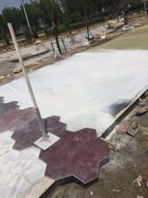 详情::湖州水泥压花地面--信息推荐图片