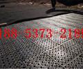 四川塑料排水板寿命价格实惠