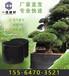 龙岩果树专用控根器排行榜
