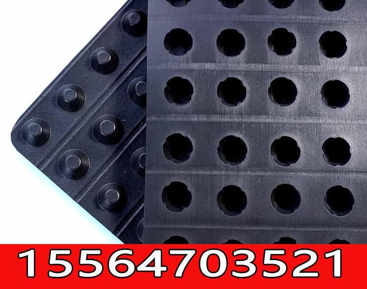 屋顶绿化塑料排水板,排水板批发商(型号咨询/欢迎您)