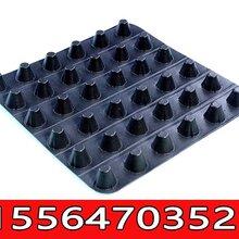 厂家供应优质塑料夹层板,排水板经销商