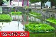 湖南自然生態浮島現貨供應