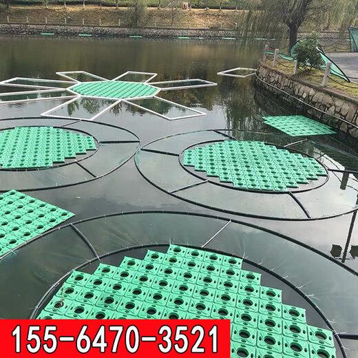 湖南水上綠化種植浮盆廠家供應