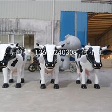 深圳光明农场奶牛安装大型玻璃钢奶牛雕塑仿真动物雕塑定制图片