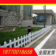 江西围墙PVC护栏中央隔离护栏市政绿化护栏