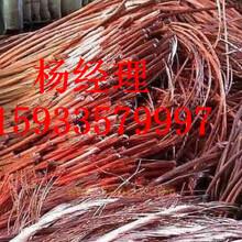 青岛市废旧电缆上门回收图片