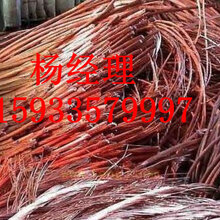 沧州市沧县低压电缆回收价格