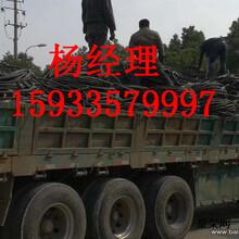 赤峰市废旧电缆上门回收图片
