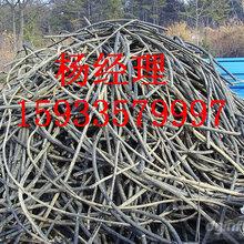 乌海市带皮电缆回收-24小时报价