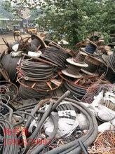 山东省滨州市电气电缆回收当月回收铜价今日铜价