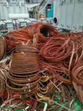 江苏省淮安市电缆回收一吨联系方式哪家好