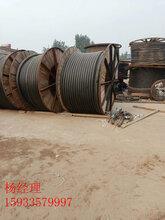 山东青岛阻燃电缆回收免费上门回收最近走势