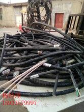 内蒙古自治区巴彦淖尔报废电缆回收为您及时报价本地回收