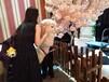 上海黃浦區-寵物服務-澳大利亞羊駝借租-生日派對