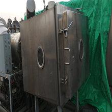 淮安常年出售二手冷凍干燥機、二手真空冷凍干燥機圖片