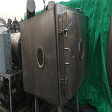 漯河低價出售二手冷凍干燥機、二手7.5方真空冷凍干燥機圖片