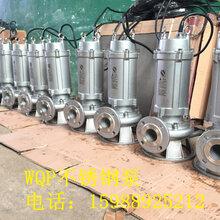 潜水式不锈钢水泵防腐防酸潜水污水泵不锈钢潜污泵wqp