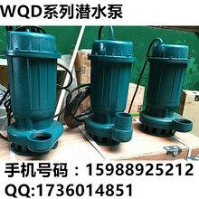 小型220V潜水污水泵家用排污泵化粪池抽水泵