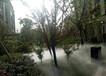 太湖#水霧風扇設備