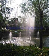 吉安园林造景人造冷雾净化空气图片