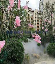 荊州別墅區造霧設備水處理方案圖片