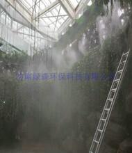 烟台景区喷雾造景设备喷头型号图片