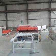 隧道焊网机/全自动焊网机型号图片