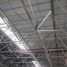 降温工业大风扇特点图片