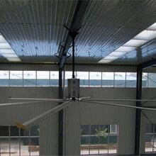 节能工业大风扇型号介绍图片