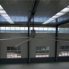 厂房工业大风扇型号介绍图片