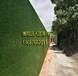 鄒城擋墻護欄用綠色草坪,假草皮圍墻圖片