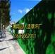 舒兰挡墙护栏用绿色草坪,仿真草皮建筑施工围墙标准