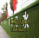 潮阳人工草坪挡墙宣传画,草坪围墙广告