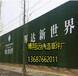 莆田挡墙护栏用绿色草坪,人造草皮临时围墙