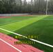 汕頭人工草坪足球場施工方案