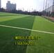 南海人造草足球場