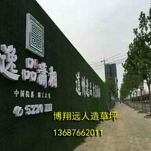 南安人造草坪围挡安装(生产销售基地)图片