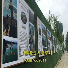 黄石-人造草坪围挡安装(现货供应)图片