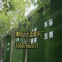 江山人造草坪围挡安装(厂家供货)图片