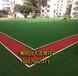 人工草坪門球場的尺寸_門球場人造綠色草坪