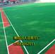 门球场人造草作用_门球场人造绿色草坪