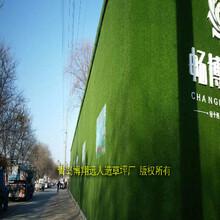 仿真草坪围挡绿植销售商环保检测图片