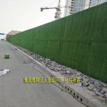 围挡绿植草坪供应商实体生产厂家图片