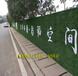 房地产仿真绿植围挡神农架每平方米价格