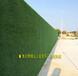 房地產仿真綠植圍擋臺兒莊區歡迎來電咨詢