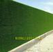 黔江区仿真绿植围挡型号